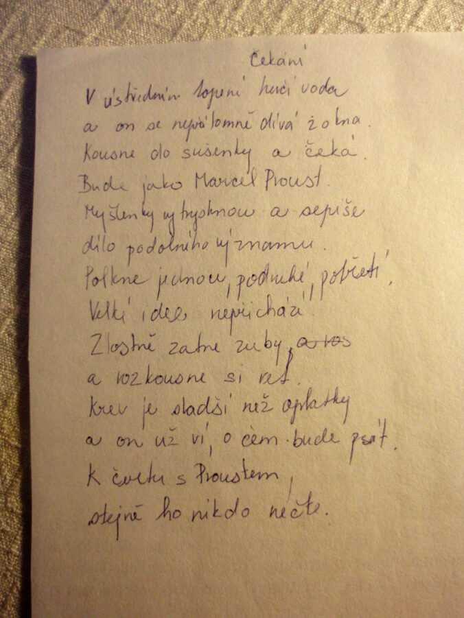 text mojí básně s názvem Čekání