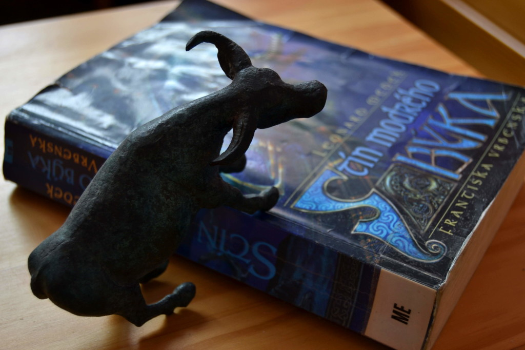 Kniha Stín modrého býka.